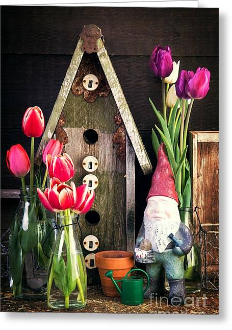 Gardening Tools Greeting Cards - Inside the Potting Shed Greeting Card by Edward Fielding