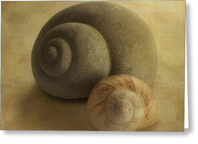 Snail Greeting Cards - Insieme Greeting Card by Priska Wettstein