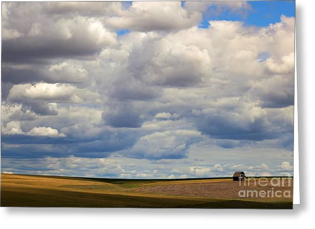 Field. Cloud Greeting Cards - Insignificant Greeting Card by Mike  Dawson
