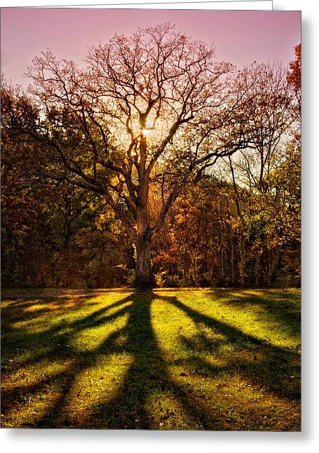 Cheekwood Greeting Cards - Inspiration Greeting Card by Christopher  Carden