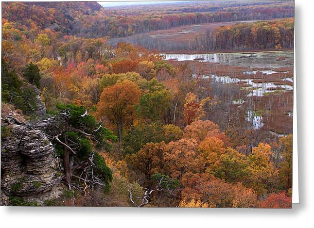Southern Illinois Greeting Cards - Inspiration Point Greeting Card by Forest Floor Photography