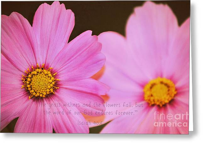 Isaiah Greeting Cards - Inspirational Flower 2 Greeting Card by Living Waters Photography