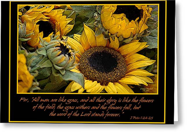Scripture Digital Art Greeting Cards - Inspirational Sunflowers Greeting Card by Carolyn Marshall