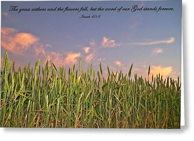 Bible Greeting Cards - Inspirations 13 Greeting Card by Sara  Raber