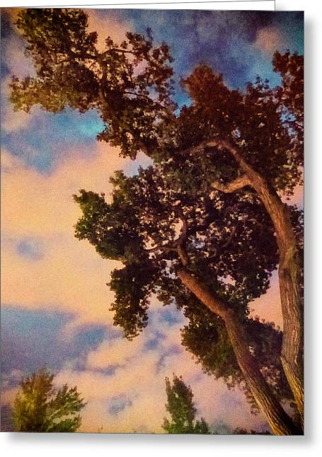 Evening Lights Greeting Cards - Inspired by Maxfield Parrish Greeting Card by Mary Lee Dereske