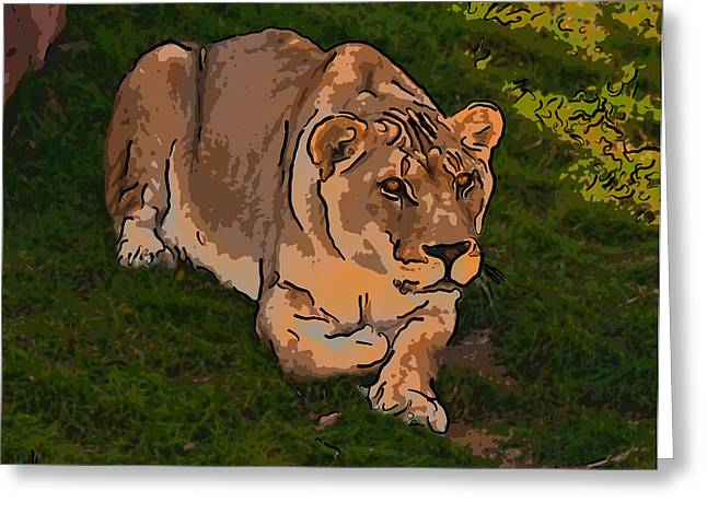 Lioness Greeting Cards - Intensity 3 Greeting Card by Steve Harrington