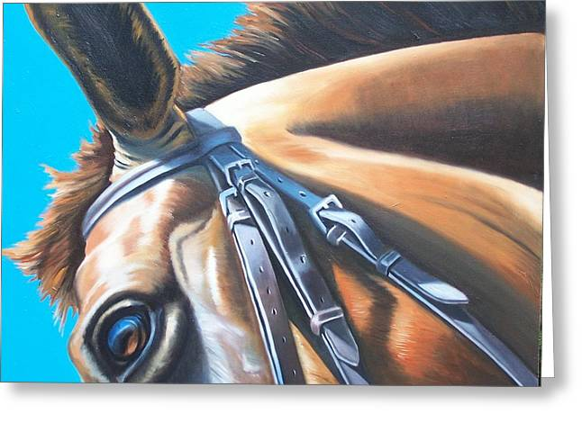Equestrian Commissions Greeting Cards - Intensity Greeting Card by Steve Messenger