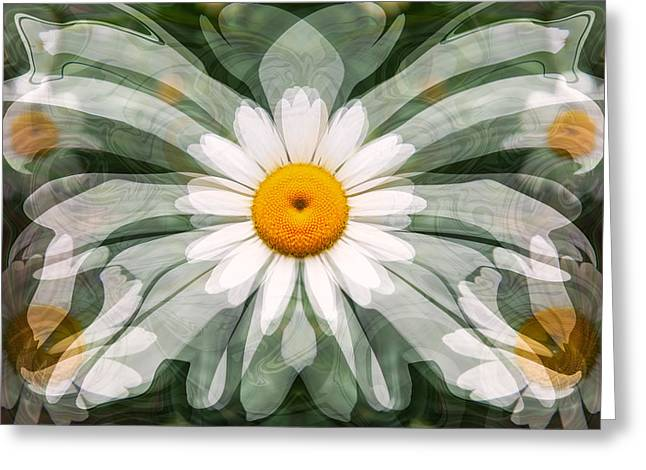Owfotografik Greeting Cards - Interdimensional Daisies Greeting Card by Omaste Witkowski