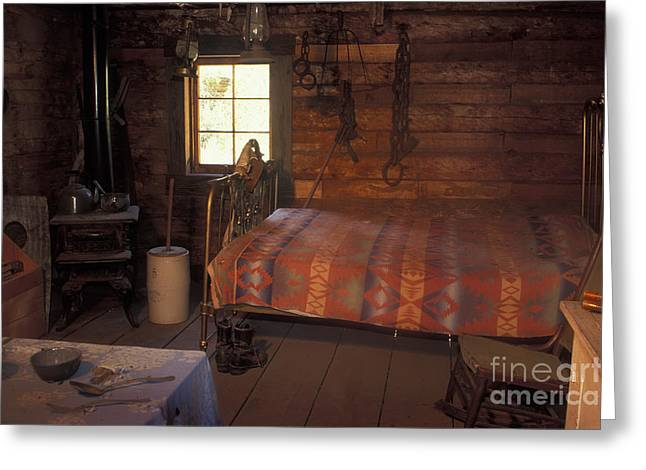 Log Cabin Interiors Greeting Cards - Interior Of A Loggers Cabin Greeting Card by Ron & Nancy Sanford
