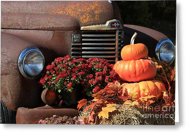 Hay Bales Greeting Cards - International Autumn Greeting Card by Benanne Stiens