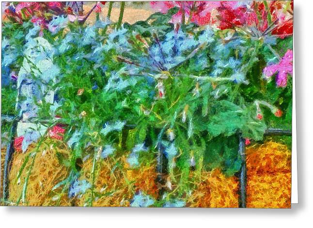 Romance Mixed Media Greeting Cards - Intimate Flower Hanging Basket Greeting Card by Dan Sproul