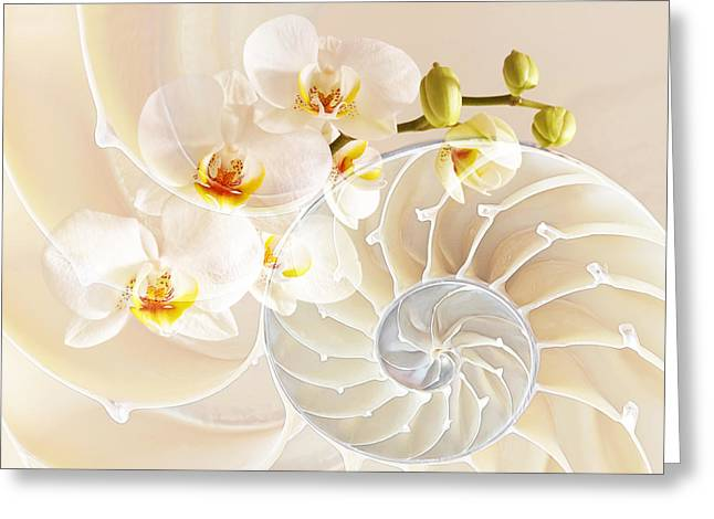 Nature Fusion Greeting Cards - Intimate Fusion Greeting Card by Gill Billington