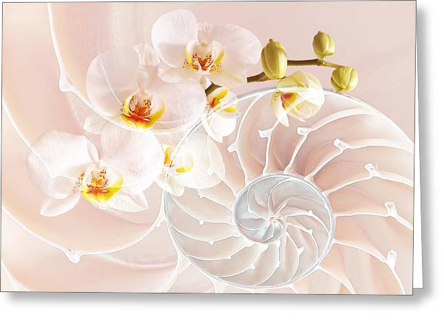 Nature Fusion Greeting Cards - Intimate Fusion In Soft Pink Greeting Card by Gill Billington