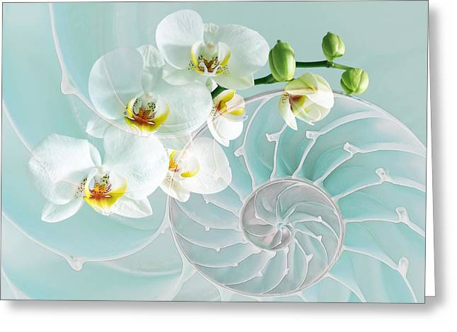 Nature Fusion Greeting Cards - Intimate Fusion in Turquoise Greeting Card by Gill Billington