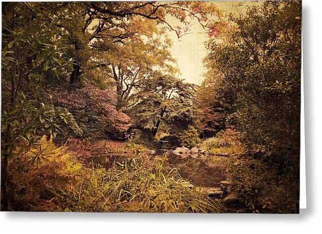 Intimate Landscape Greeting Card by Jessica Jenney