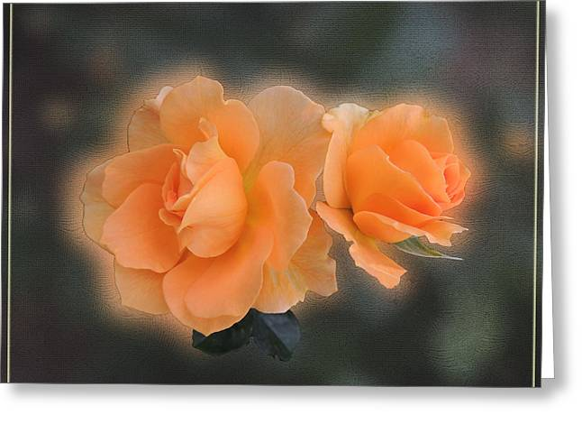 Tangerine Greeting Cards - Intimate Greeting Card by Teresa Schomig