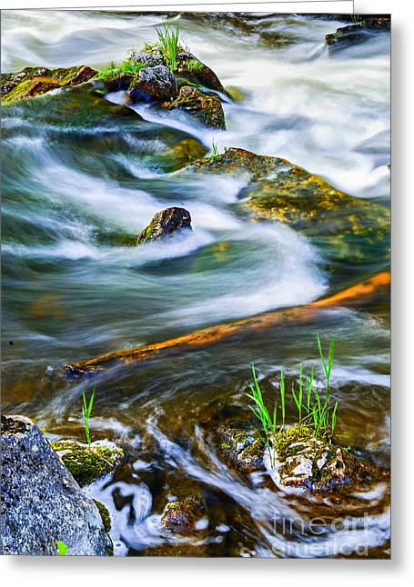 Rapids Greeting Cards - Intimate with river Greeting Card by Elena Elisseeva