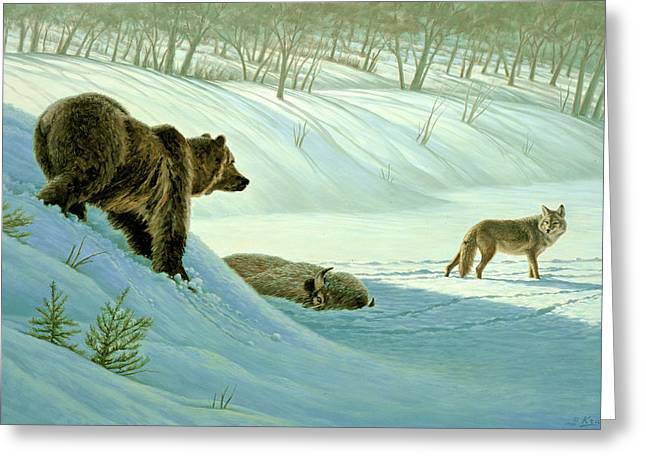 Coyote Greeting Cards - Intimidation   Greeting Card by Paul Krapf