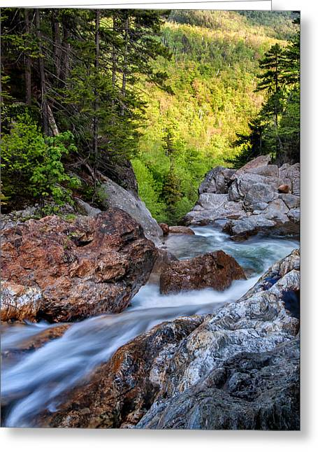 North Conway Greeting Cards - Into The Abyss - Ellis River Pinkham Notch Greeting Card by Thomas Schoeller