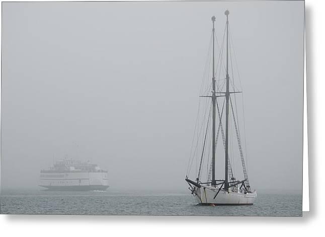 Into the Fog Greeting Card by Steve Myrick