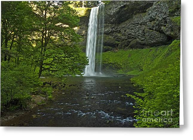 Water Flowing Greeting Cards - Into The Green Greeting Card by Nick  Boren