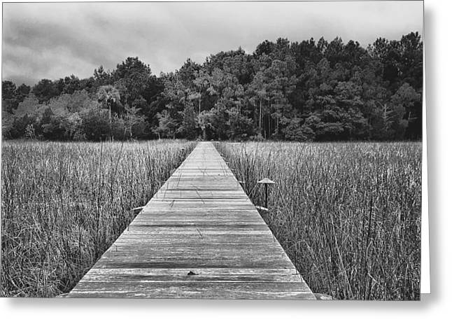 Wood Pier Greeting Cards - The Other Side Greeting Card by Drew Castelhano