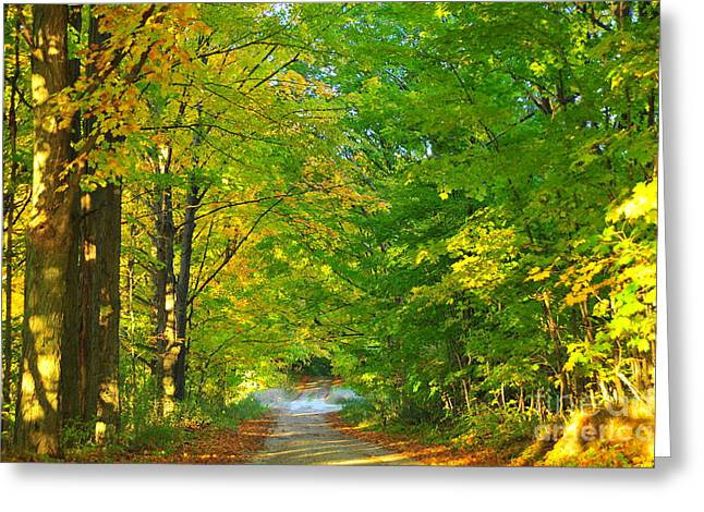 Fall Trees Greeting Cards - Into the Leaf Tunnel Greeting Card by Terri Gostola