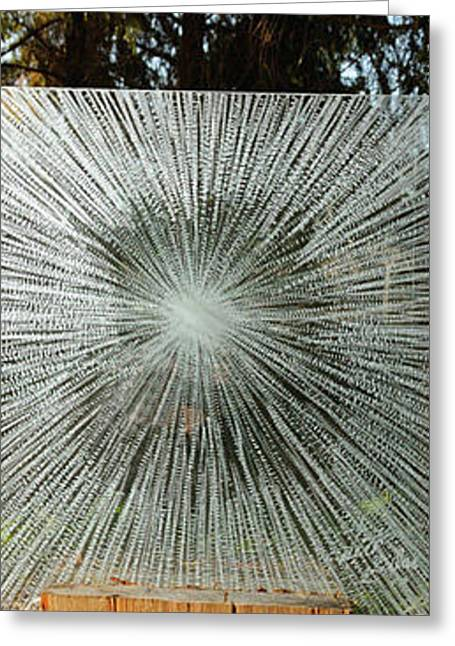 Outdoor Glass Art Greeting Cards - Into the Light Greeting Card by Rick Silas