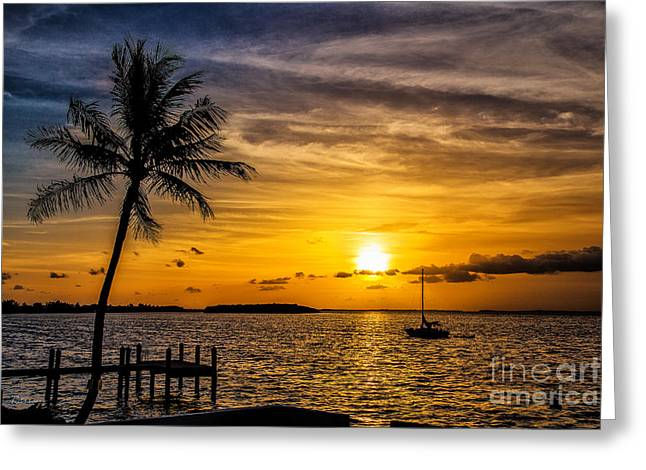 Isla Morada Greeting Cards - Into the Light We are One Greeting Card by Rene Triay Photography
