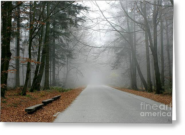 Going Forward Greeting Cards - Into the mist Greeting Card by Joanna Cieslinska