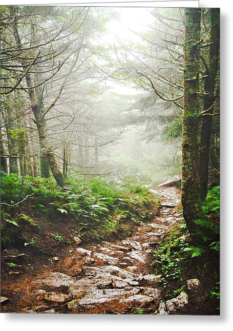 Recently Sold -  - Photo Art Gallery Greeting Cards - Into the Mist Greeting Card by Zak Collins