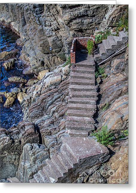Abstract Beach Landscape Greeting Cards - Stairway to the Sea Greeting Card by Alanna Dumonceaux
