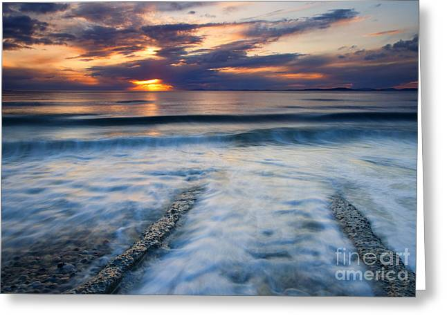 Sea Greeting Cards - Into the Sea Greeting Card by Mike  Dawson