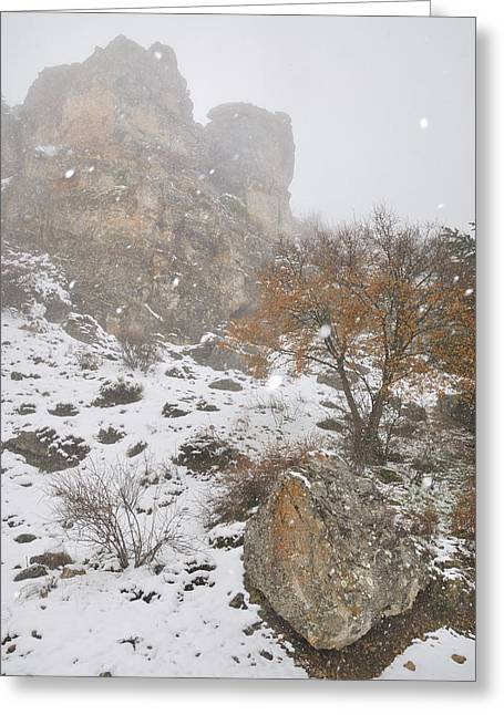 Mountain Road Greeting Cards - Into the snowstorm Greeting Card by Guido Montanes Castillo