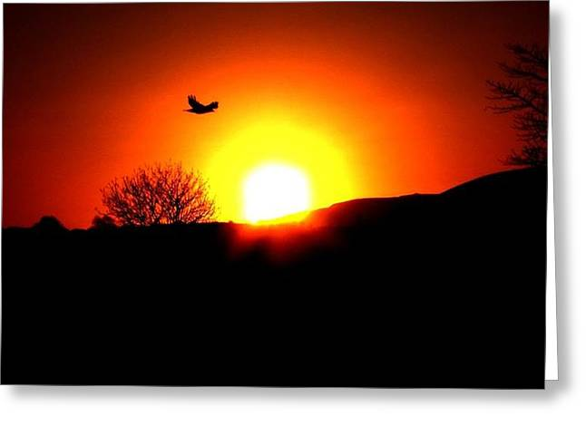 Photographs With Red. Greeting Cards - Into The Sun Greeting Card by Eddie Armstrong