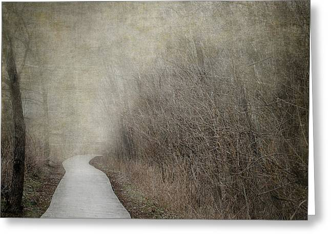 Peaceful Scene Greeting Cards - Into The Unknown Greeting Card by Jai Johnson