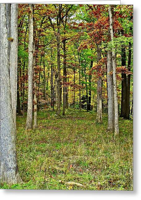 Breezy Greeting Cards - Into The Void Greeting Card by Frozen in Time Fine Art Photography