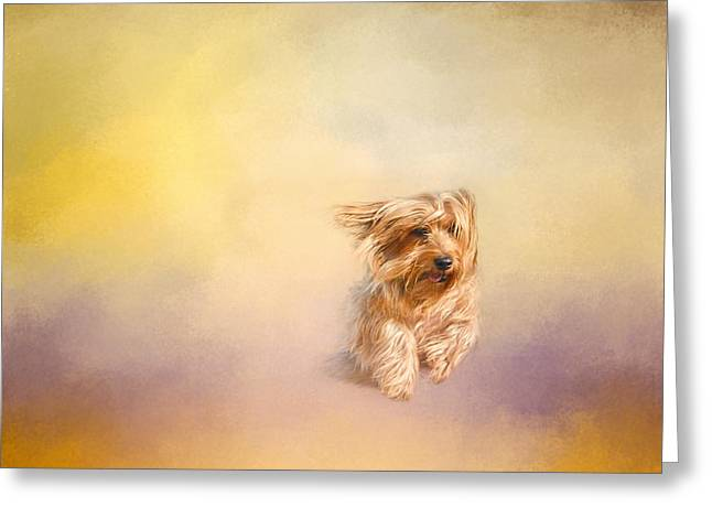 Dog Photo Greeting Cards - Into The Wind Greeting Card by Jai Johnson