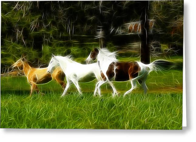 The Horse Greeting Cards - Into The Wind Greeting Card by Steve McKinzie