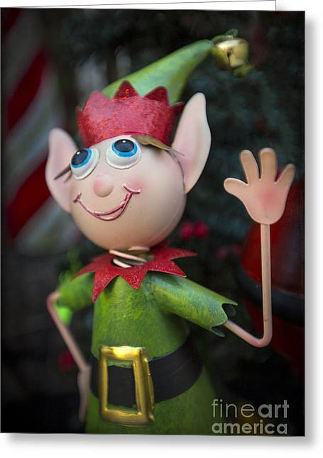 Elf Greeting Cards - Introduce Yours-ELF Greeting Card by Evelina Kremsdorf