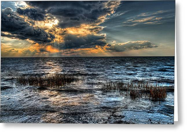 Sea Oats Greeting Cards - Invasion I - Outer Banks Greeting Card by Dan Carmichael
