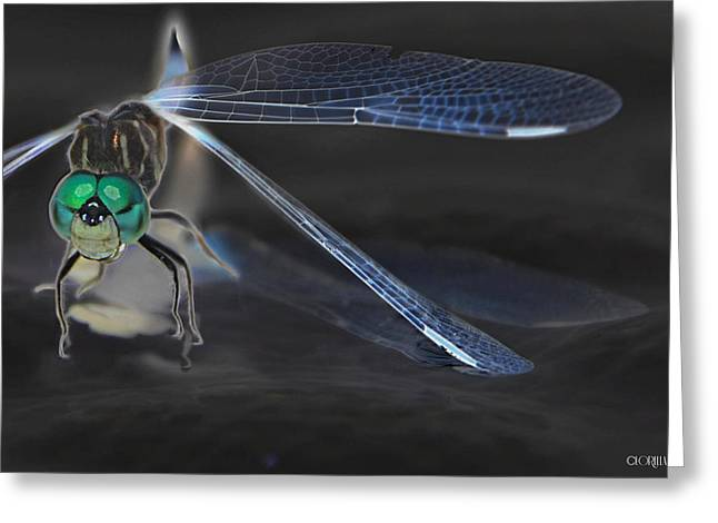 Inversion Greeting Cards - Invert Dragonfly Greeting Card by Lorella  Schoales