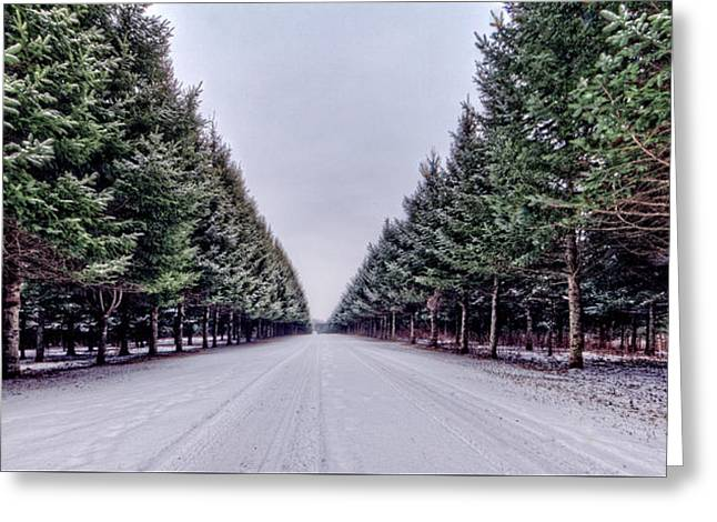 Pines Greeting Cards - Invitation from the Pines Greeting Card by Everet Regal