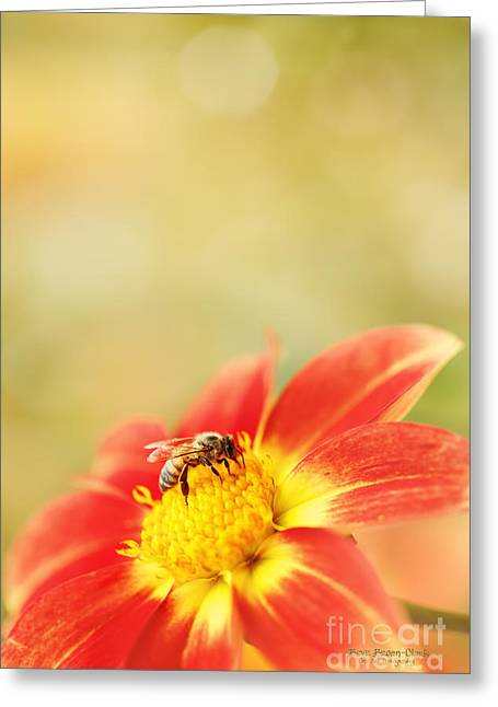 Spokane Greeting Cards - Inviting Greeting Card by Reflective Moments  Photography and Digital Art Images