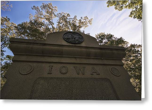 Landing Place Greeting Cards - Iowa in the Nest Greeting Card by Mike Talplacido