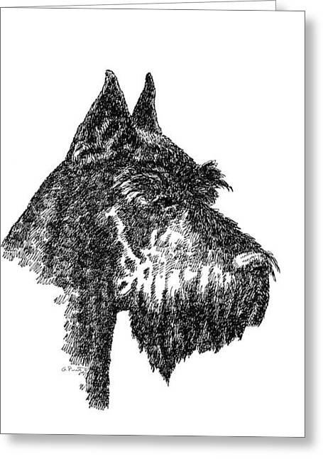 Giant Schnauzer Greeting Cards - iPhone-Case-Schnauzer Greeting Card by Gordon Punt