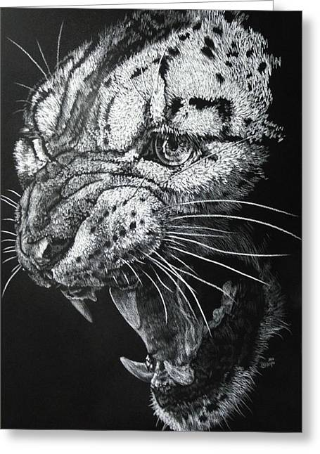 Wildcats Drawings Greeting Cards - Ire Greeting Card by Barbara Keith