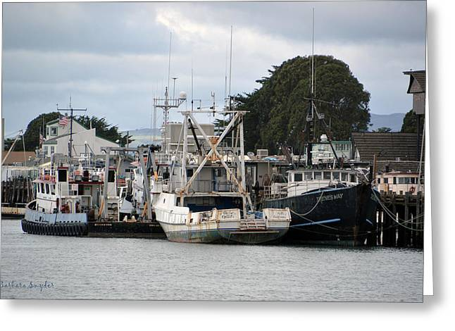 Working Boats Greeting Cards - Irenes Way Morro Bay Greeting Card by Barbara Snyder