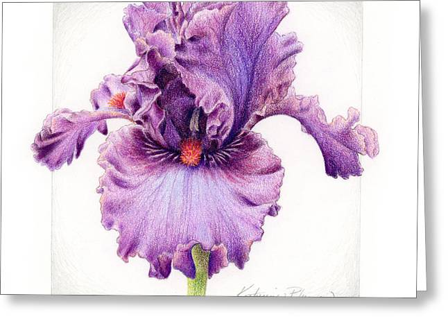 Iris Greeting Cards - Iris 1 Asian Plum Greeting Card by Katherine Plumer