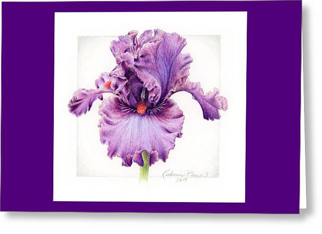 Bearded Iris Greeting Cards - Iris 1 Asian Plum Greeting Card by Katherine Plumer
